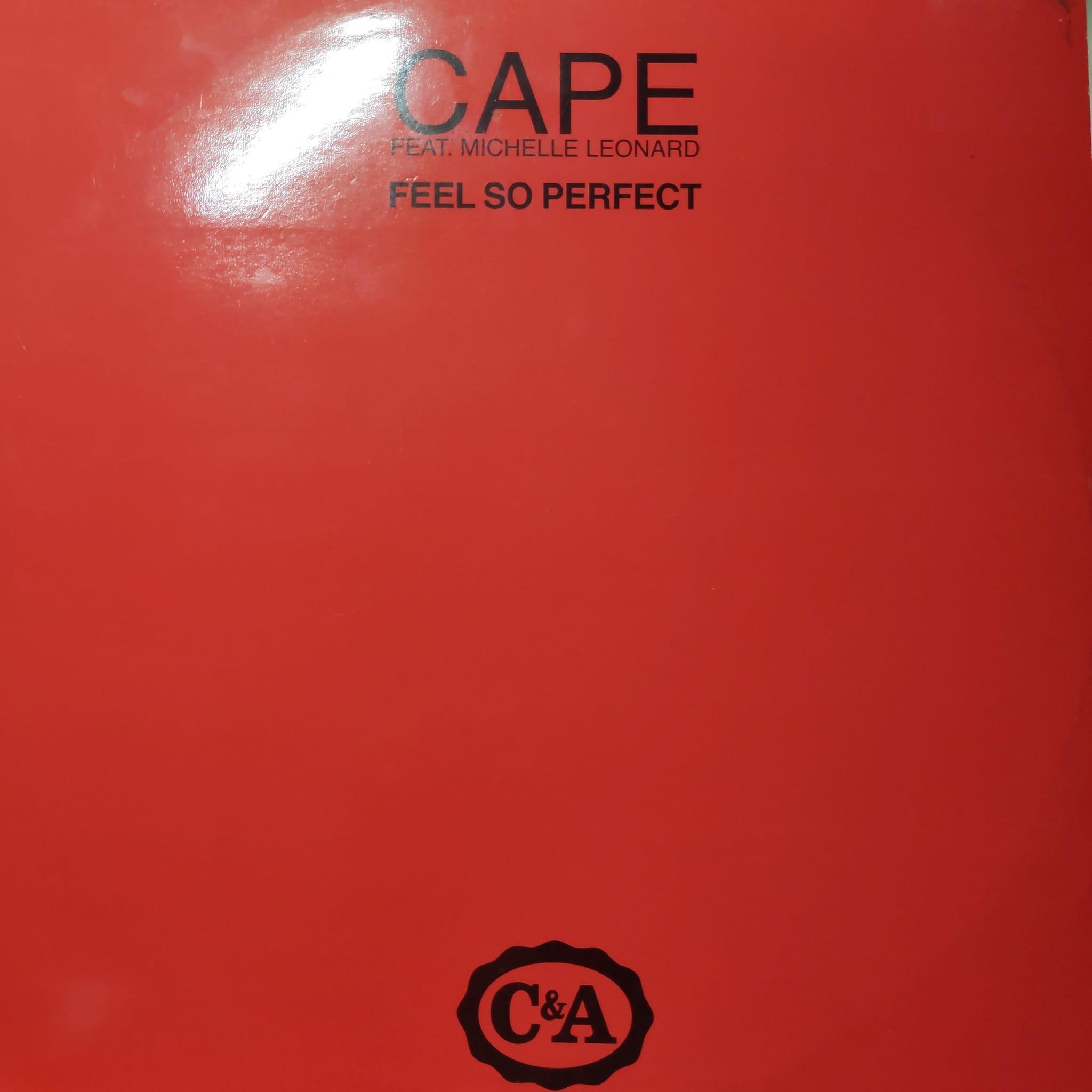 (R231) Cape Feat Michelle Leonard – Feel So Perfect
