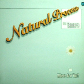 (5293) Natural Process Feat. Tamara – Where Are You?