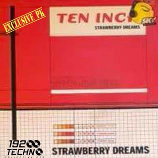(AA00032B) Ten Inch – Strawberry Dreams
