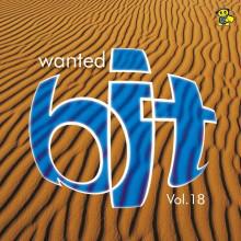 (13304) Wanted Bit Vol. 18