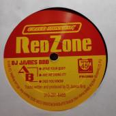 (29490) DJ James BND 007 – Club Station Red Zone