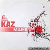 (12728) D10 Presents Kaz – Falling
