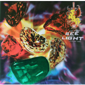(CM660) Snap! Feat. Niki Haris – Do You See The Light (Looking For)