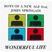 (CUB1557) Boys Of A New Age Featuring John Springate ‎– Wonderful Life