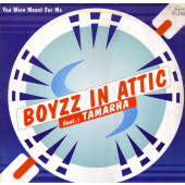 (RIV556) Boyzz In Attic Feat. Tamarha – You Were Meant For Me