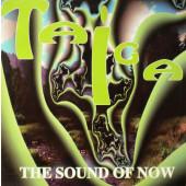 (CUB1132) Taiga – The Sound Of Now