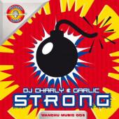 (22284) DJ Charly & Garlic – Strong (SIN PORTADA)