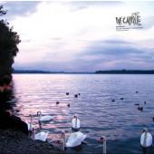 (CO191) Decapante – Decapante II