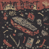 Picture Perfect – Rose