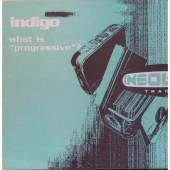 (CUB2435) Indigo – What Is Progressive