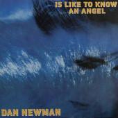 (29412) Dan Newman – Is Like To Know An Angel